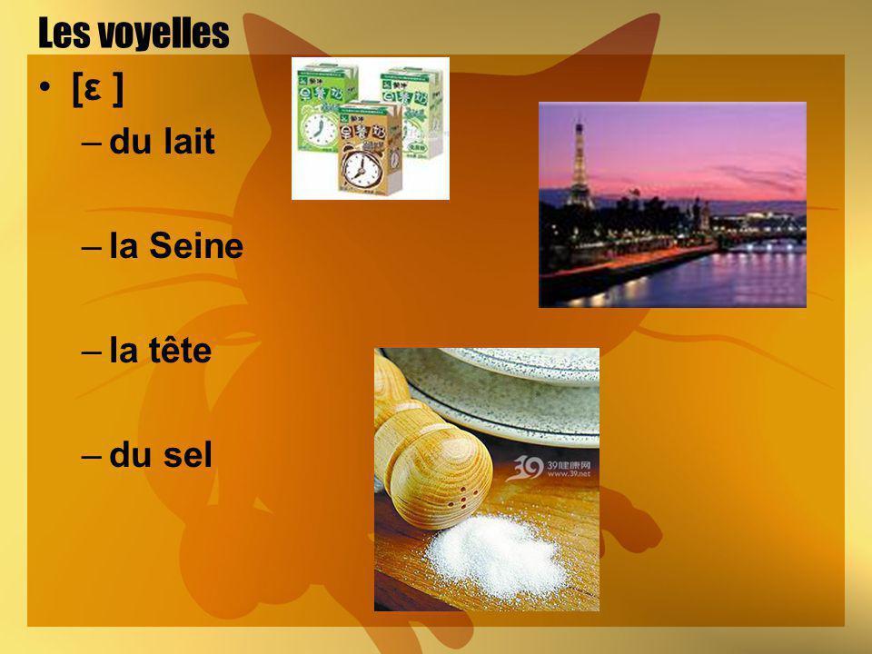 Les voyelles [ε ] du lait la Seine la tête du sel